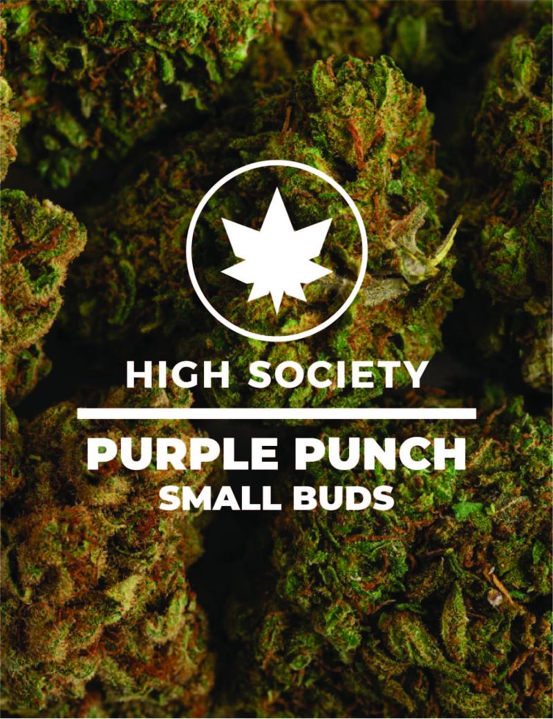 HighSociety-Fleurs-Indoor-PurplePunch-CBD-50G-100G