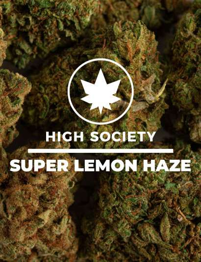 SUPER LEMON HAZE CBD