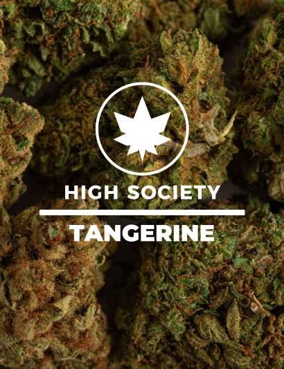 Tangerine-CBD