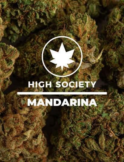 MANDARINA CBD
