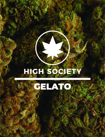 HighSociety-Fleurs-Indoor-Gelato-CBD-50G-100G