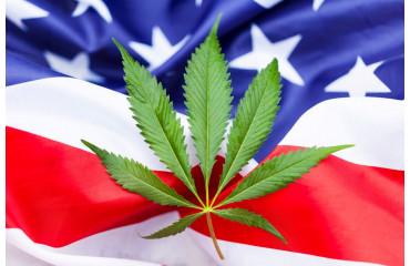 2/3 des docteurs américains favorables au cannabis médical