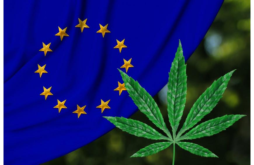 Production de chanvre en Europe : la France toujours numéro 1 !